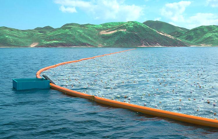 Далайг хэрхэн цэвэрлэдэг вэ?