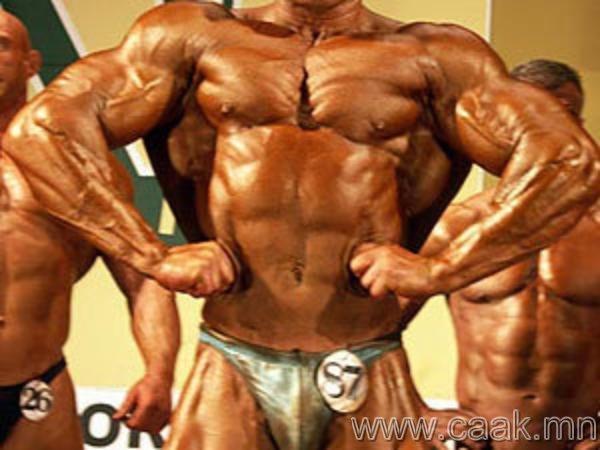 Спортоор хичээлэхгvй бол булчин єєх болж дуусдаг