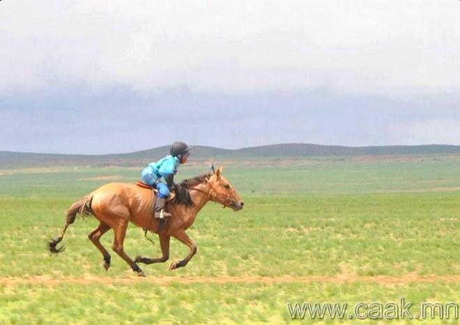 Гурван нас хүрээд л морь унаж сурдаг.