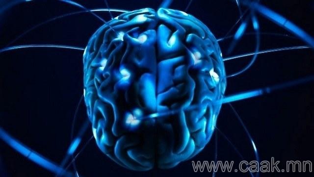 Тархин дахь судасны цохилтын хурд