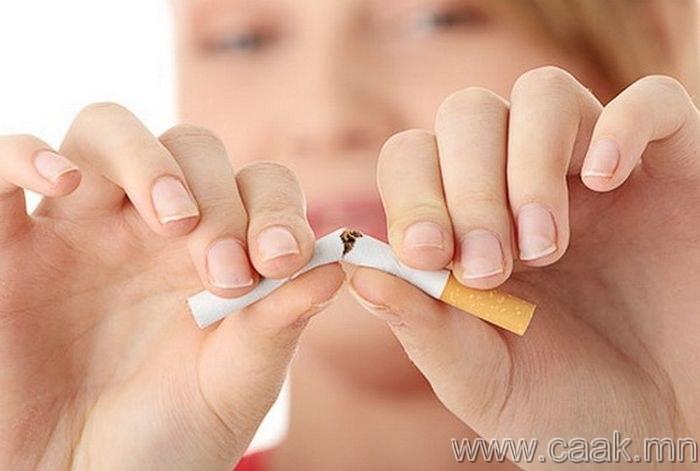 """""""Тамхи бүү тат"""""""