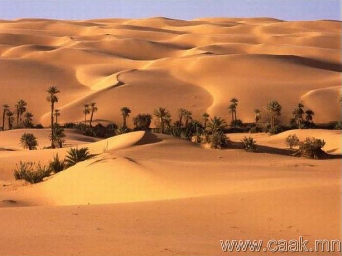Их цөлийн эх орон – Ливи