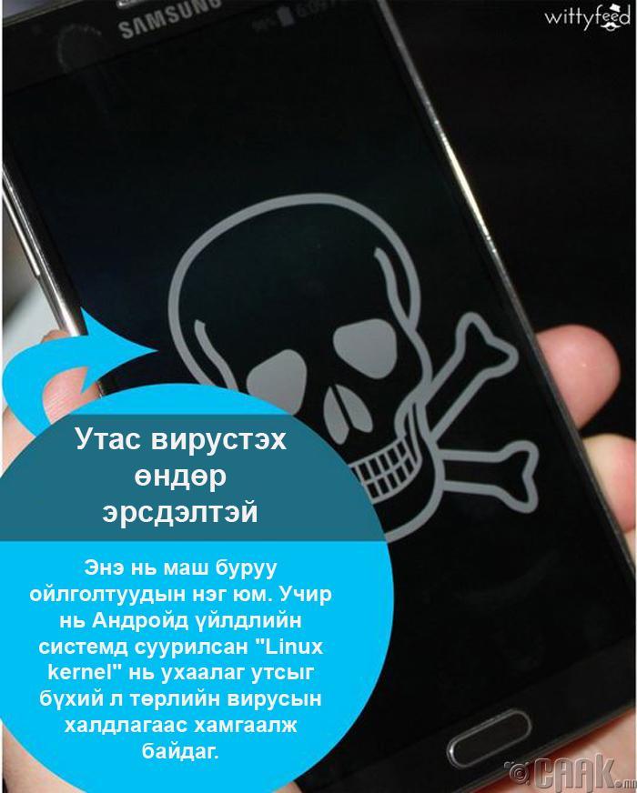 Утас вирустэх аюултай