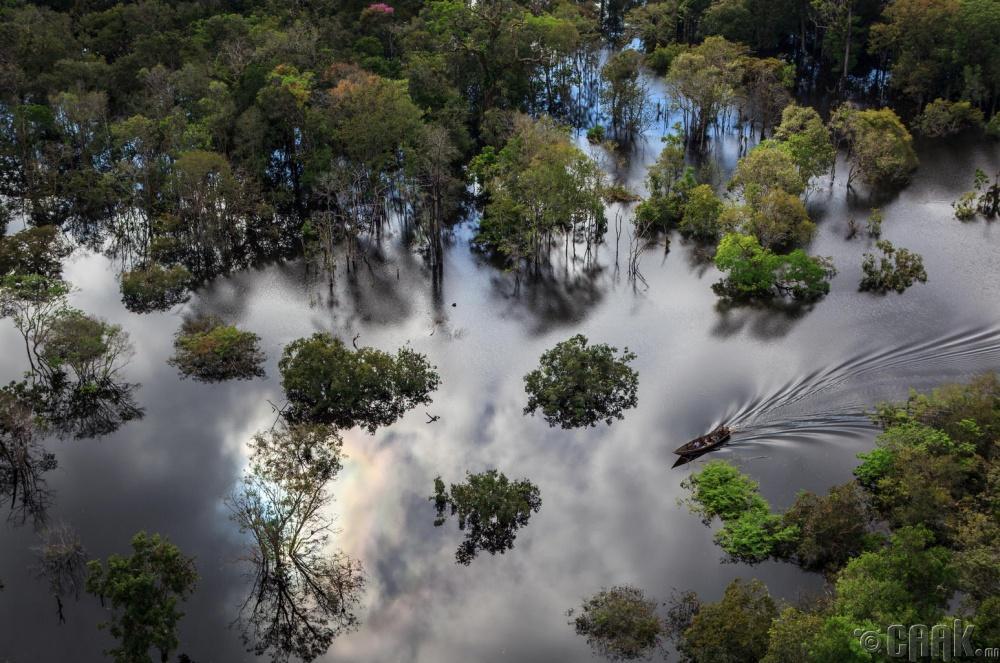 """Амазон мөрөнд орших """"Anavilhanas"""" үндэсний парк, Бразил"""