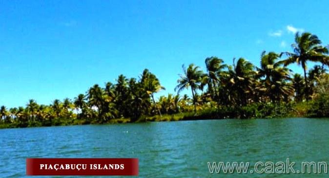 """Бразил, """"Piacabucu"""" арлууд"""