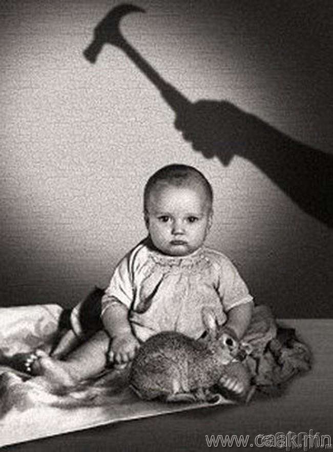Альберт хүү дээр хийсэн туршилт (1920)