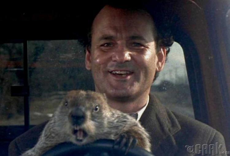 """""""Groundhog Day""""- Гэгээрэл"""
