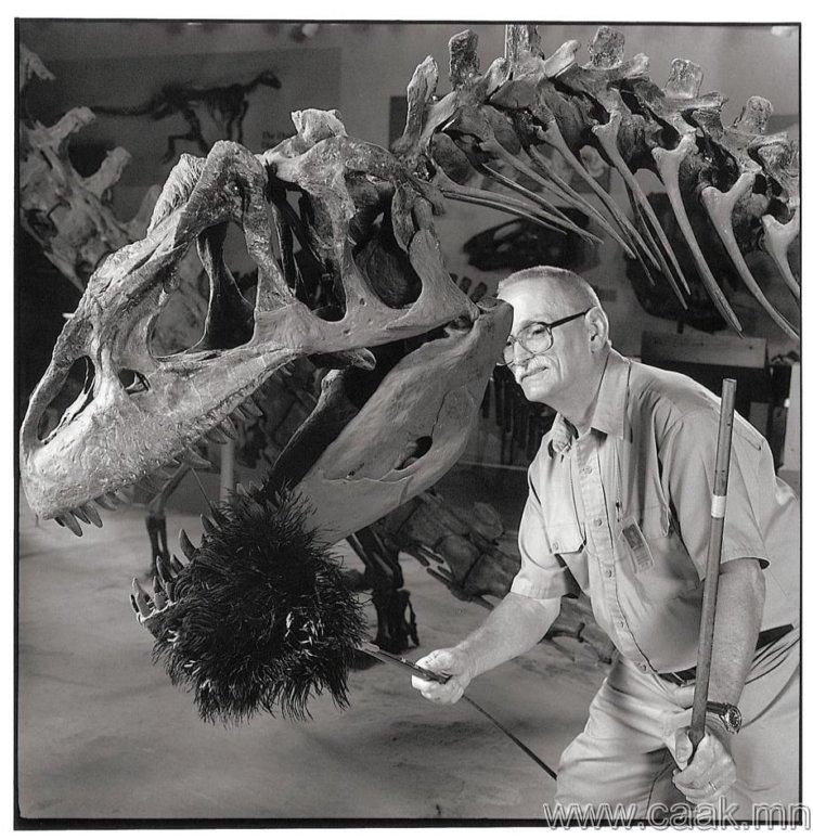 Динозаврын тоос арчигч.