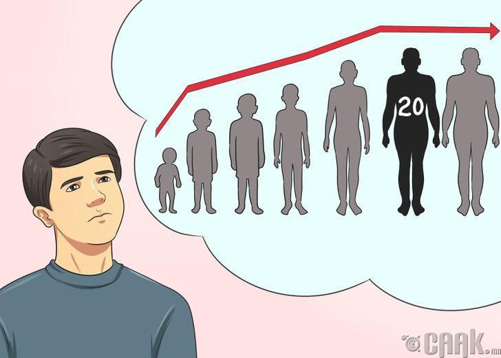 Хэдэн нас хүртлээ өсөх боломжтой вэ?