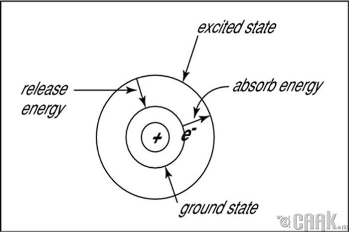 Борын цөмийн загвар