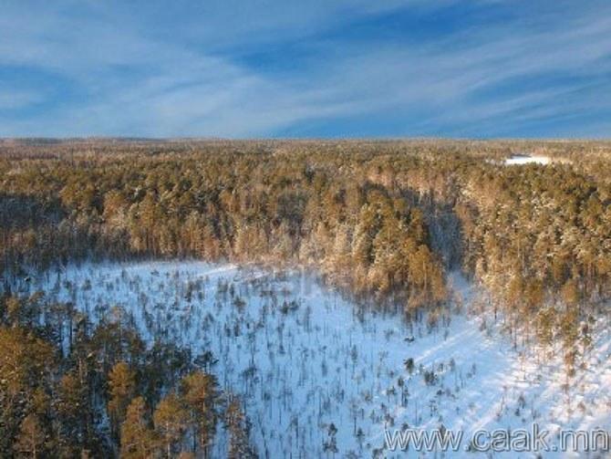 Сибирийн зүүн хойд хэсэг /Камчаткийн хойг/