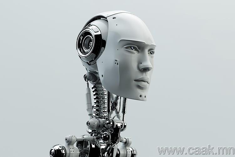 Роботын зөвлөгч