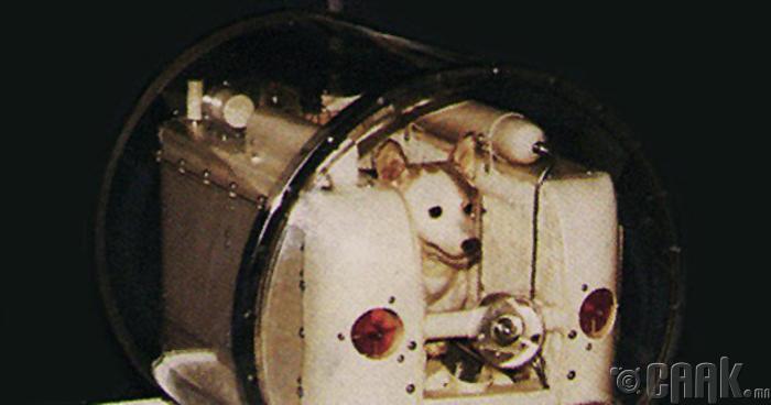 Оросын анхны сансрын нисгэгч