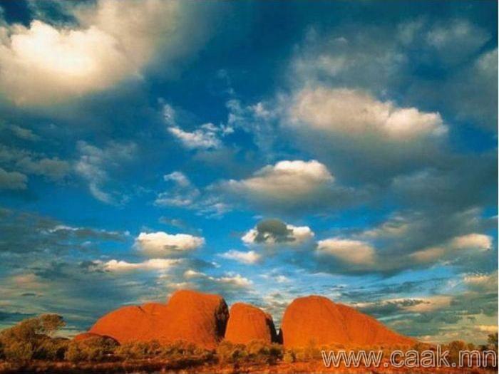 Тив улс- Австрали