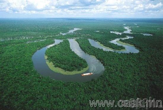 Амазоны урсгал