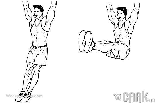 Хэвлийн доод булчинг хөгжүүлэх