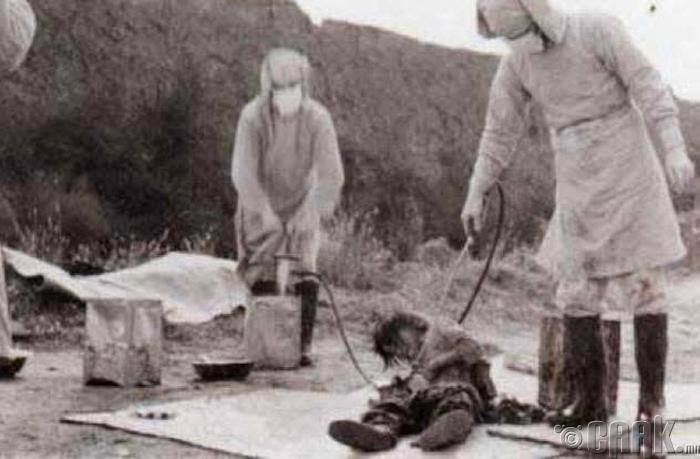 """""""Unit 731"""""""