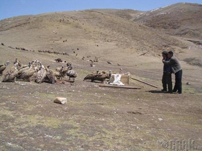 Төвдийн ил оршуулах ёслол