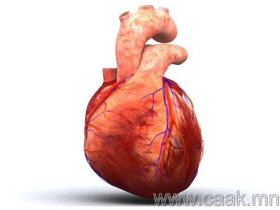 Таныг найтахад зүрх тань хоромхон зогсдог.