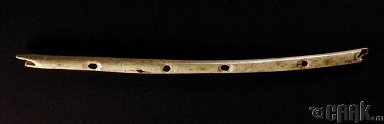 Хөгжмийн зэмсэг - 40000 жилийн настай