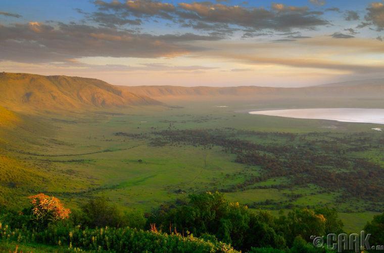 Зэрлэг байгал, Танзани