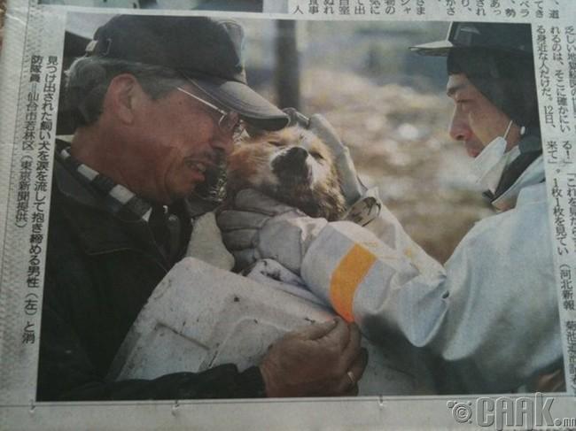 2011 оны Японд болсон Цунамигийн дараа нохойгоо олсон эр