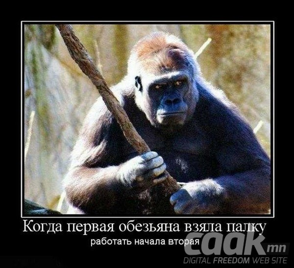 Сармагчин хамгийн түрүүнд модыг гартаа авах санааг олсон.