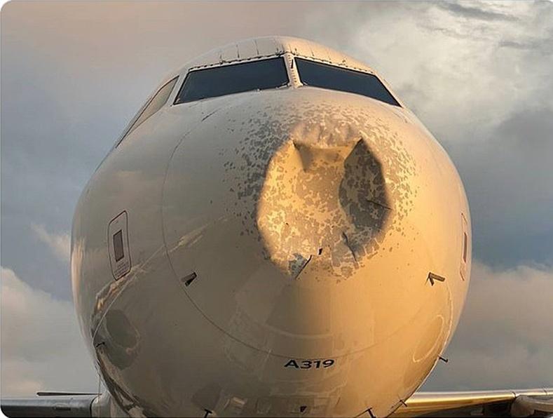 Delta компанийн онгоц шувуутай мөргөлдөж, ослын буулт хийсний дараа