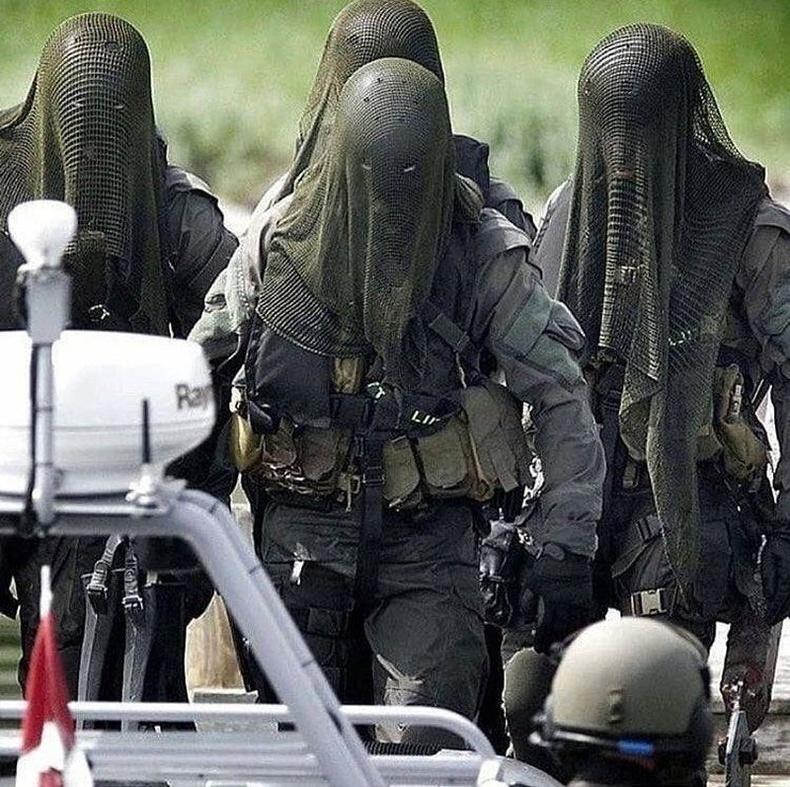Мэргэжлийн шумбагчдаас бүрдсэн Данийн Тэнгисийн цэргийн тусгай хүчнийхэн