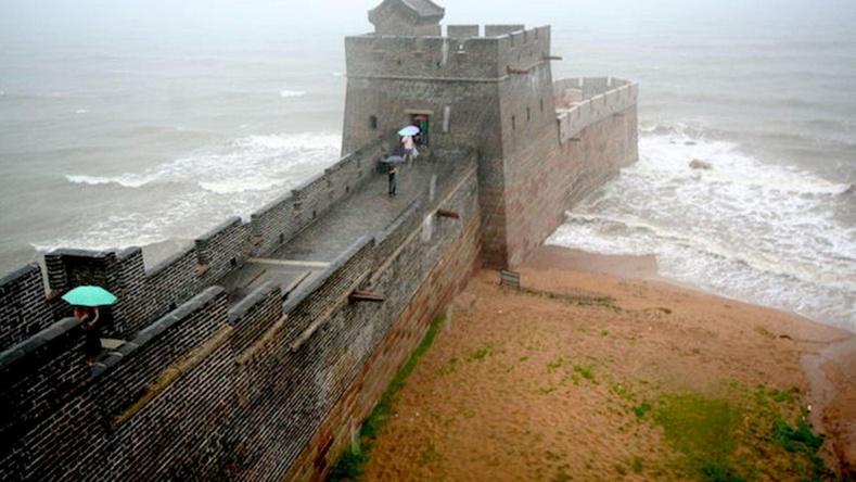 Хятадын цагаан хэрмийн төгсгөл