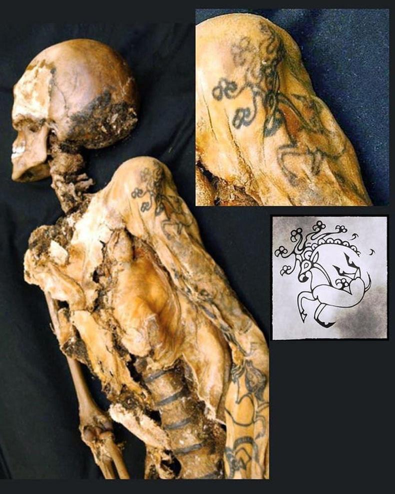 Алтайн нуруунаас (ОХУ) олдсон 2500 жилийн настай, бугын дүрстэй шивээс бүхий эмэгтэйн мумми