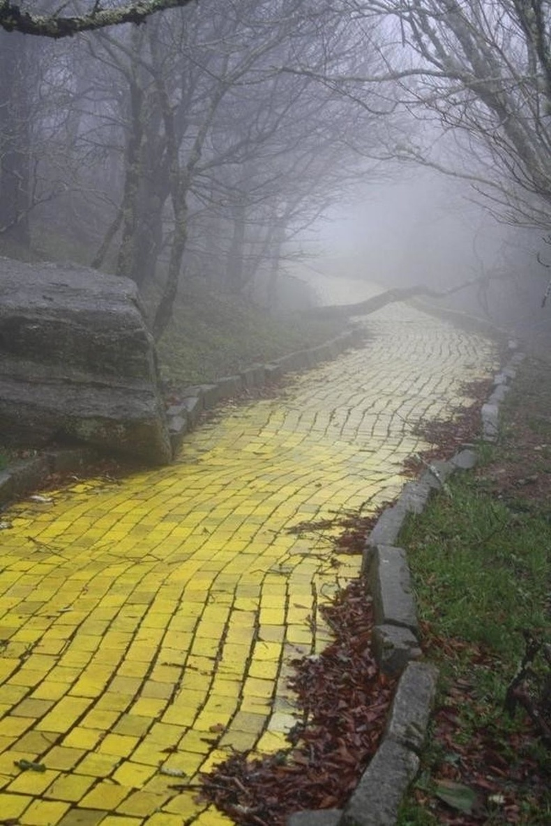 """Хойд Каролина дахь """"Oz"""" соёл амралтын хүрээлэнгийн зам"""