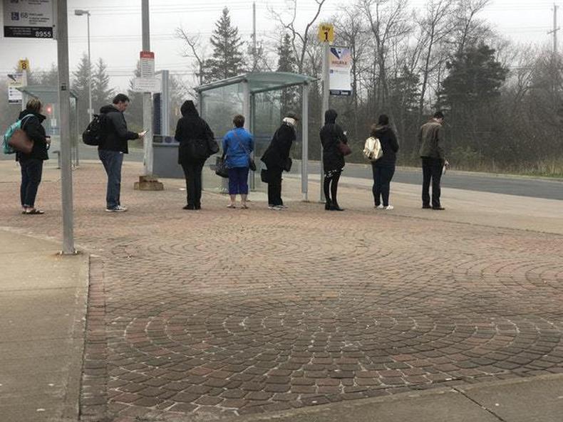 Оочерлож автобус хүлээж буй Канадчууд