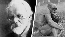 Бич, хүний эрлийз гаргах гэж оролдсон Зөвлөлтийн эрдэмтэнд юу тохиолдсон бэ?
