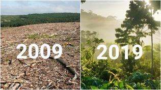 Байгаль эх сэргэх боломжтой гэдгийг харуулсан зургууд