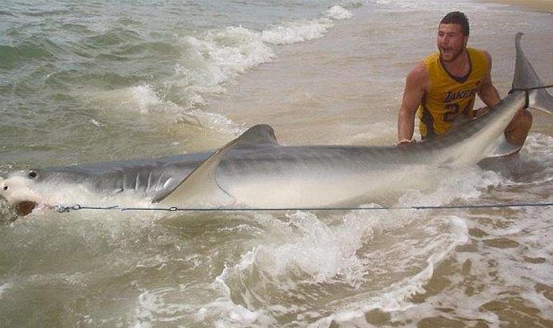4 метр урт аварга загас уургаар барьжээ