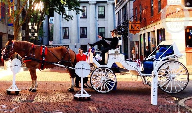 Бостон (Boston)