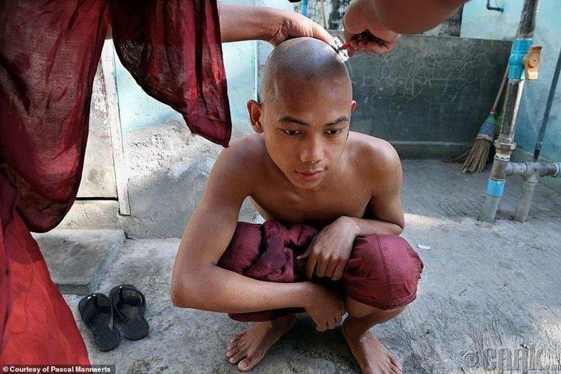 Үсээ хусуулж буй залуу мьянмар лам