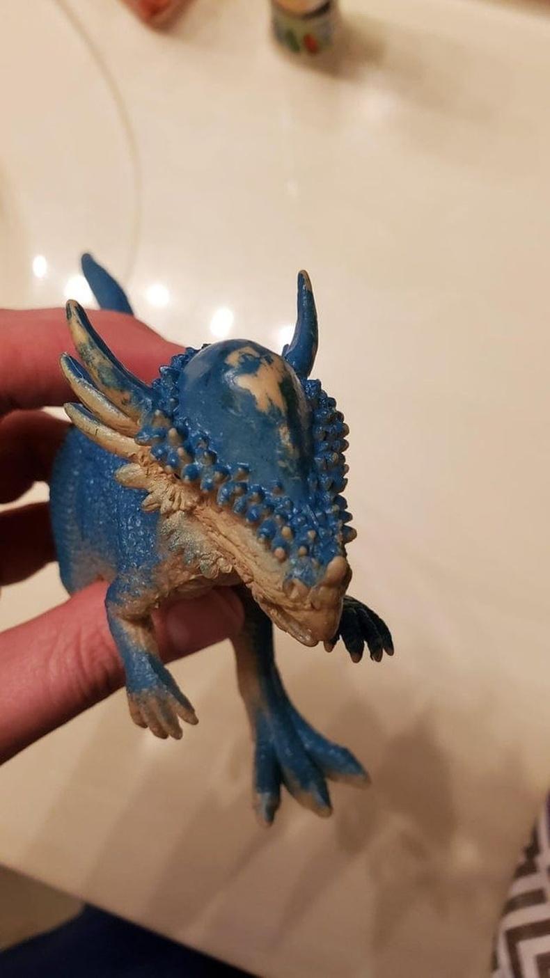 Тоглоомон пахицефалозаврыг бусад динозавруудтай мөргөлдүүлсээр байгаад толгой нь халцарсан байна.