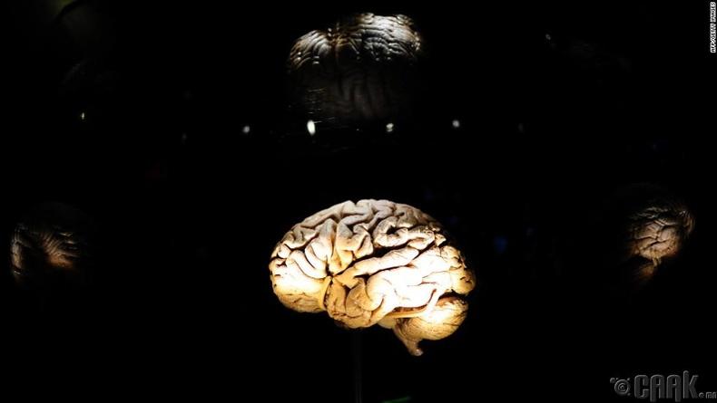Тархи энергиэ нөхдөг