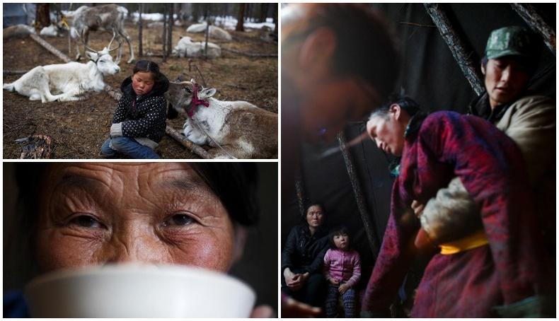 """""""Reuters"""" агентлагийн дуранд Монголын цаатангууд..."""