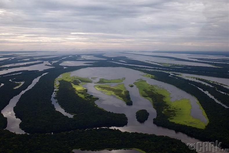 Амазоны ихэр нь газар доор урсдаг