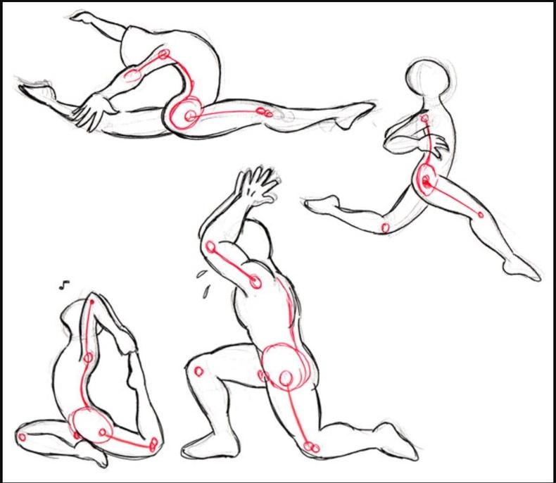Эмэгтэйчүүд цээжиндээ булчингүй, мөн илүү удаан жин хасдаг