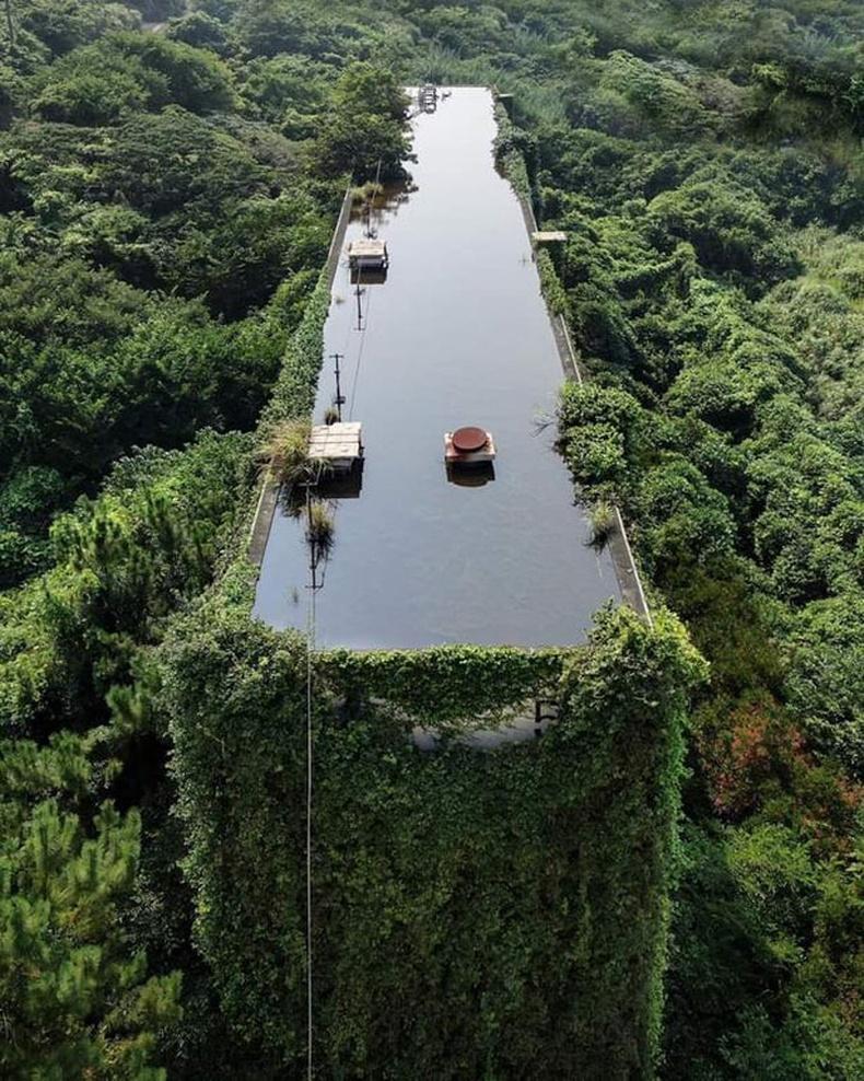 """Хаягдсан үйлдвэрийн барилга байгальд """"дийлдэж"""", дээвэр дээр нь усан сан бий болжээ"""