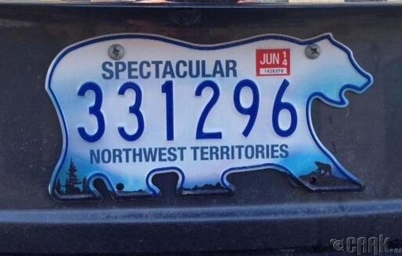 Канадын баруун хойд бүс нутагт машины номер нь баавгай хэлбэртэй байдаг