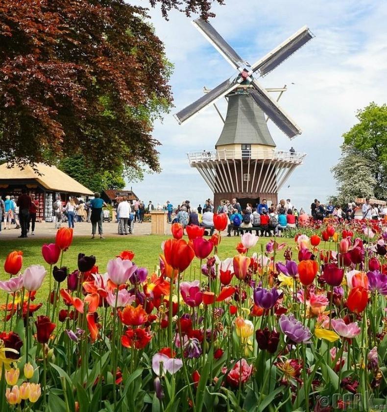Голланд - Нидерланд