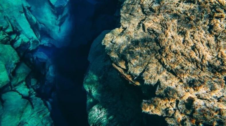 Манай гарагийн хамгийн урт нуруу усан доор оршдог бөгөөд энэ нь Андын нуруудаас 10 дахин урт юм.