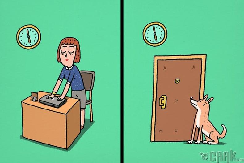 Амьтад зөн совинтой байдаг
