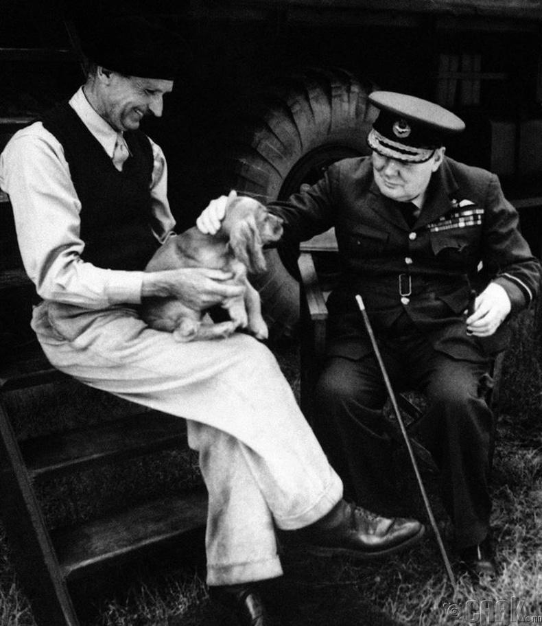 Уинстон Черчилль арслан тэжээдэг байжээ