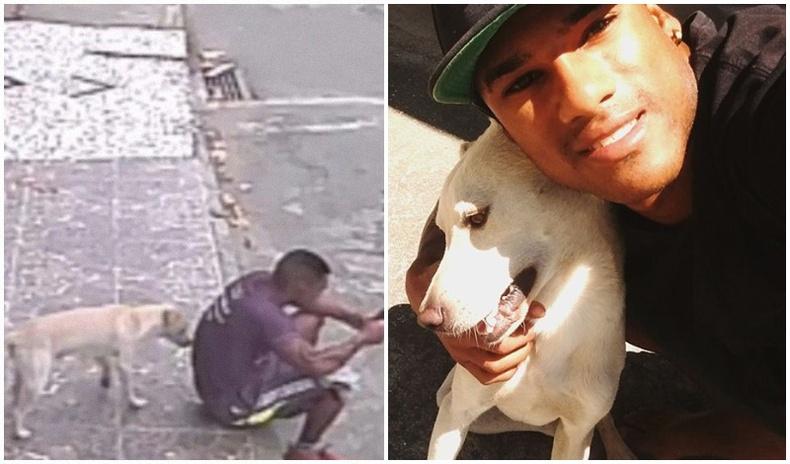 """Өөр дээр нь """"морь харсан"""" нохойг үрчилж авсан Бразил залуу"""